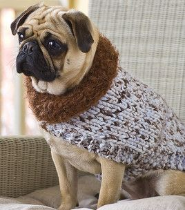 Dog Sweater crochet 1