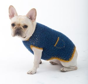 Dog Sweater crochet 2