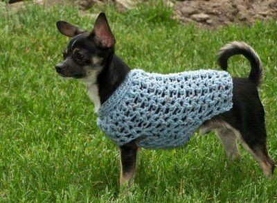 Dog Sweater crochet 5