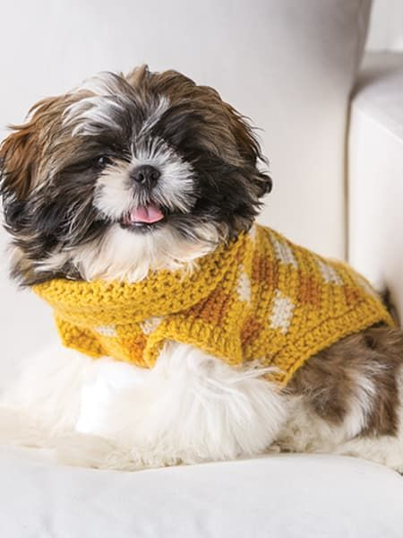 Dog Sweater crochet 6