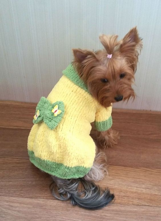 Dog Sweater crochet 8
