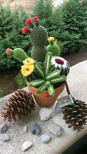 crochet cactus ideas 14