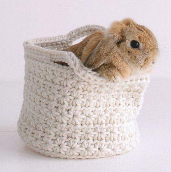 star stitch knitting pattern 10